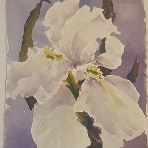 Iris flower white original watercolor small